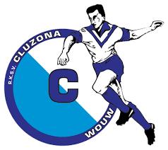 cluzona logo